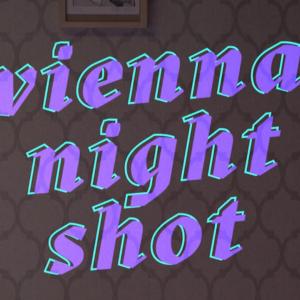 Vienna Night Shot