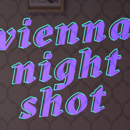 Vienna Night Shot
